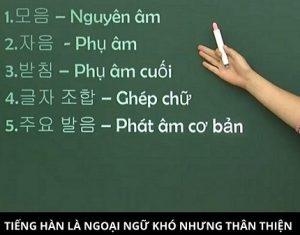Kinh nghiệm thuê gia sư Tiếng Hàn đảm bảo chất lượng ở Hà Nội