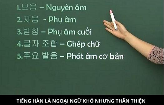 kinh-nghiem-thue-gia-su-tieng-han-chat-luong-o-ha-noi