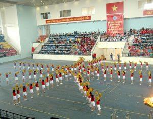 Dịch Vụ Gia Sư Tiểu Học Tại Huyện Gia Lâm Chất Lượng Cao
