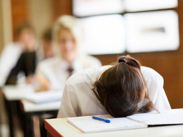 Tác hại của việc học lệch học tủ